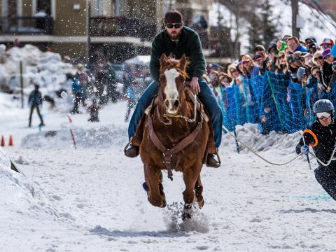 Skijoring via horse during West Yellowstone's Skijor West Championships